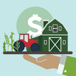 Illustrated farm with dollar sign on a plater