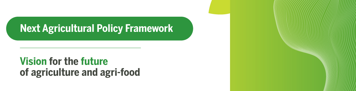 Next Agricultural Policy Framework: Vision for the future of agriculture and agri-food
