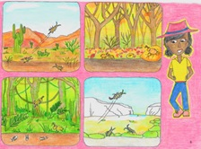 An illustration of a young  scientist wearing hat, with four smaller illustrations of insects in various environments.