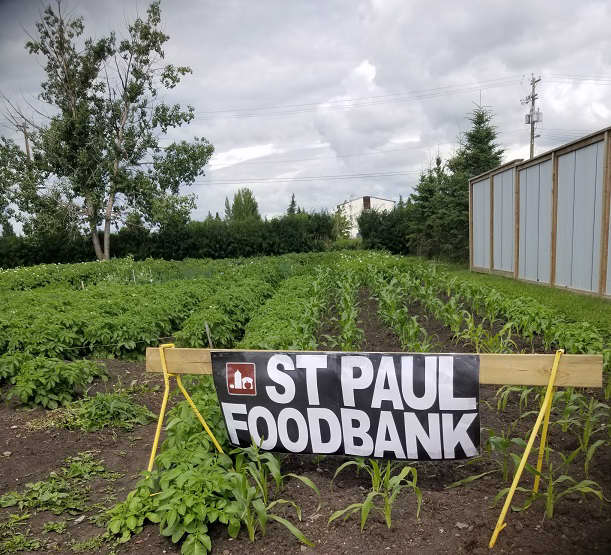 Garden with St. Paul & District  Food Bank.
